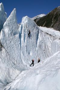 Franz Josef Glacier Ice Climbers