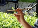 Chopsticks For Weight Loss?