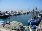 Coastal Living--Is It Healthier?