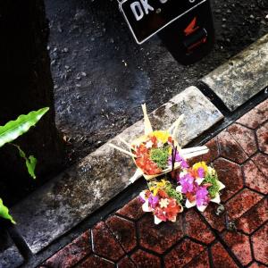 Leaf and flower offering basket
