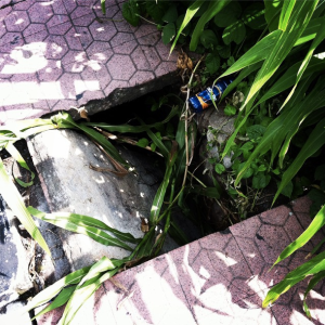 Pothole 1