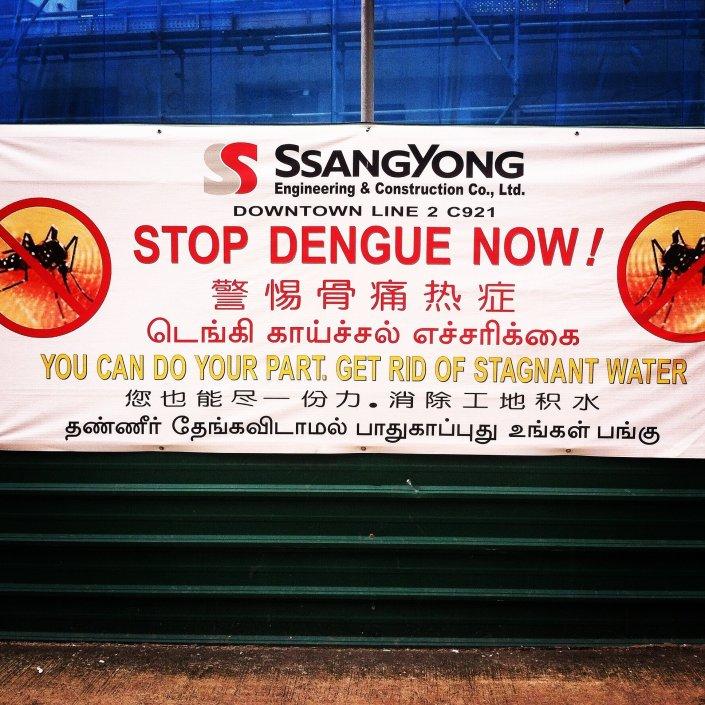 Stop Dengue Singapore