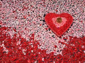 Engagement rose petal pool